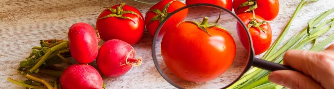 Food quality tracking
